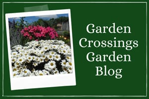 Image link to Garden Crossings Garden Blog page