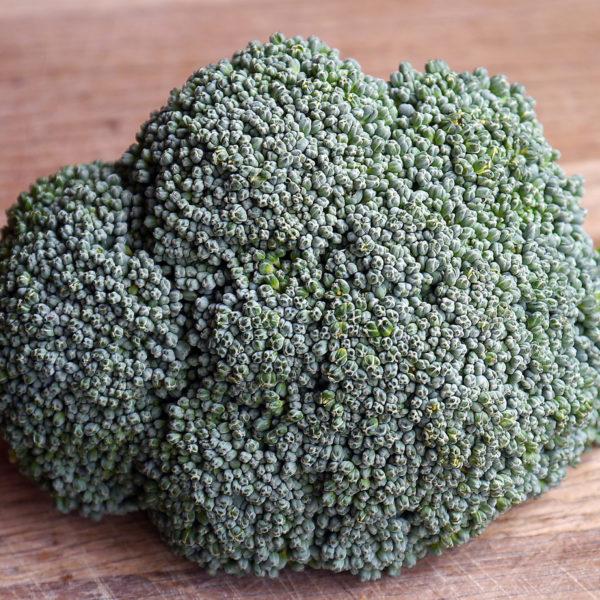 Broccoli Destiny Broccoli