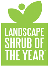 Landscape Shrub of the Year