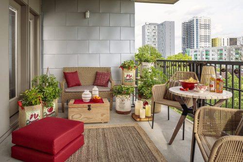 4 Proven Harvest on balcony_PW
