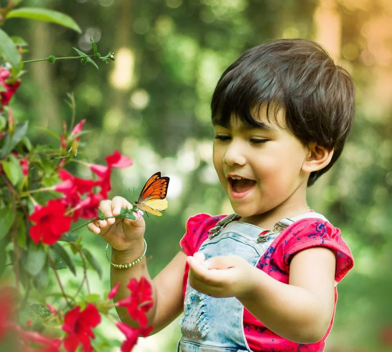 Child with butterfly_stock photo