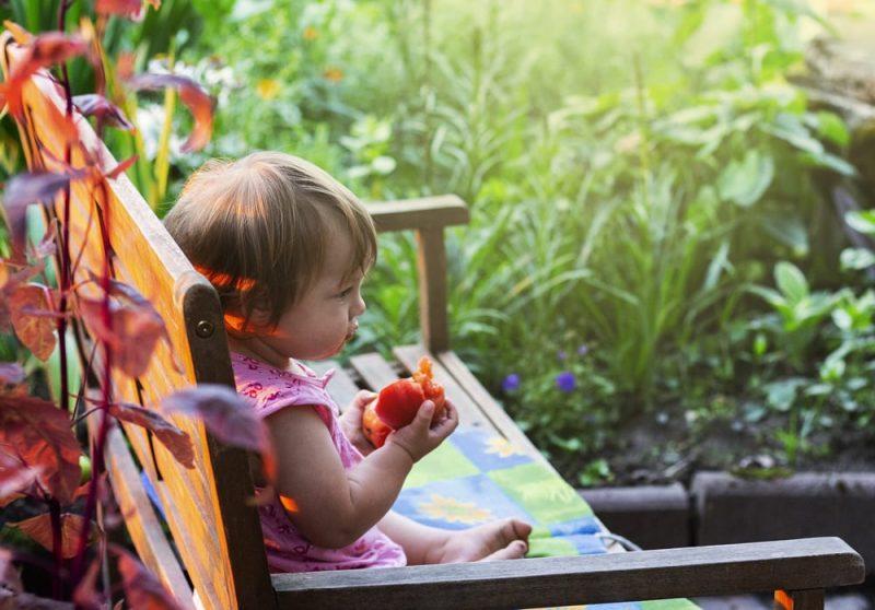 child eating tomato_stock photo